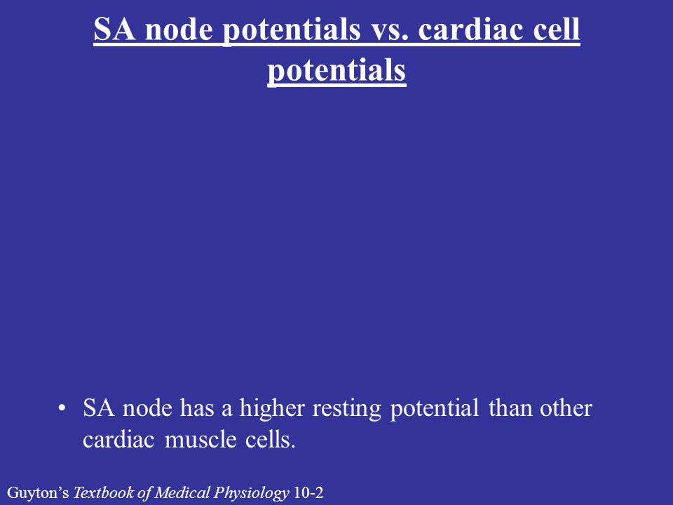 SA node potentials vs. cardiac cell potentials