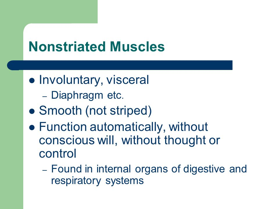 Nonstriated Muscles Involuntary, visceral Smooth (not striped)