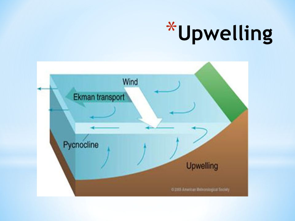 Upwelling http://oceanmotion.org/html/background/upwelling-and-downwelling.htm 62
