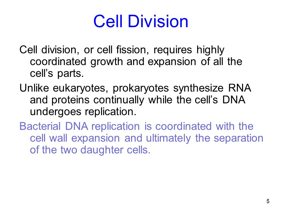 Cell Division Cell division, or cell fission, requires highly coordinated growth and expansion of all the cell's parts.