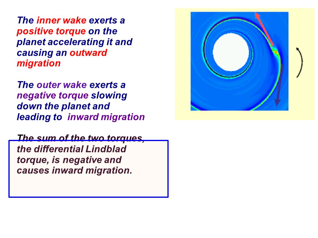 The inner wake exerts a positive torque on the planet accelerating it and causing an outward migration