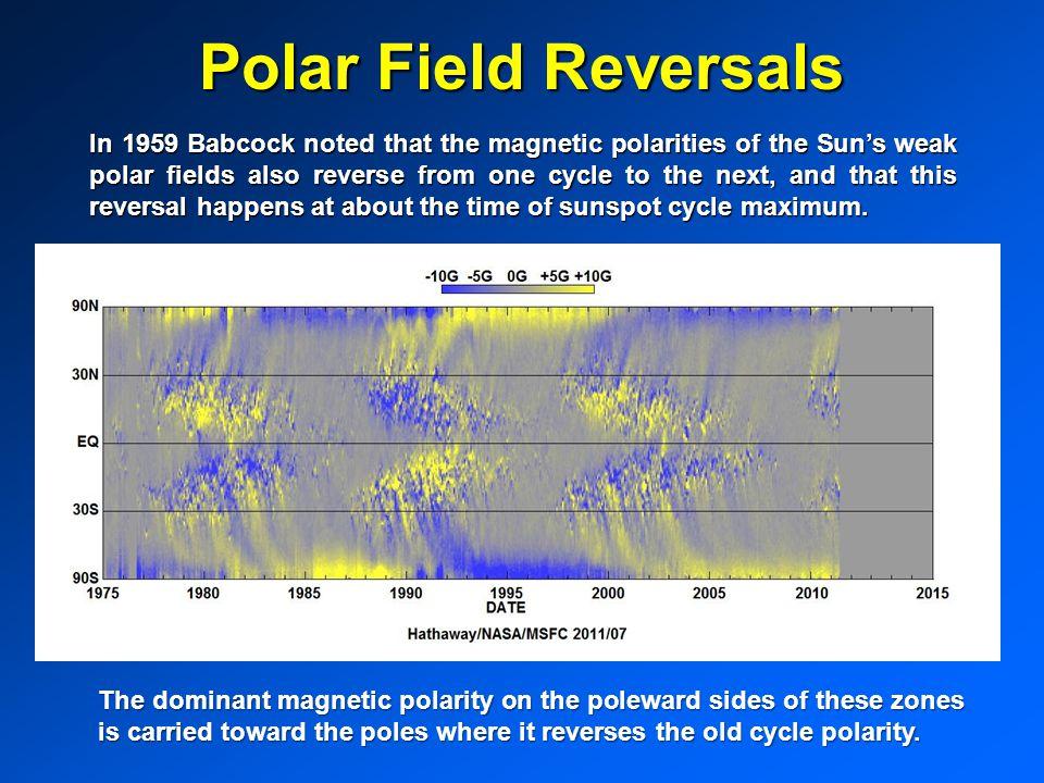Polar Field Reversals