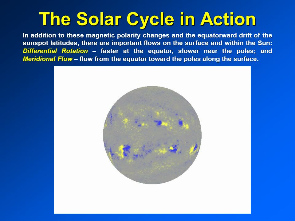 The Solar Cycle in Action