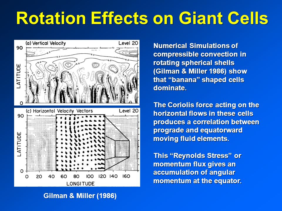 Rotation Effects on Giant Cells