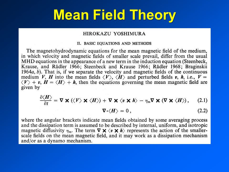 Mean Field Theory