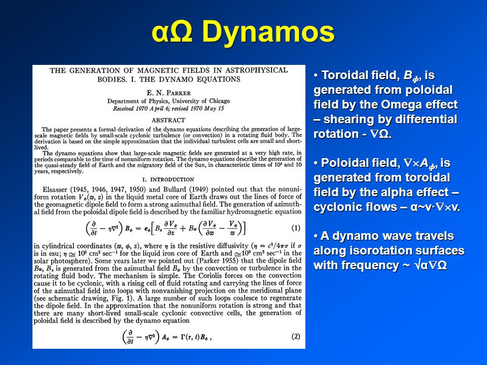 αΩ Dynamos Toroidal field, Bɸ, is generated from poloidal field by the Omega effect – shearing by differential rotation - Ω.