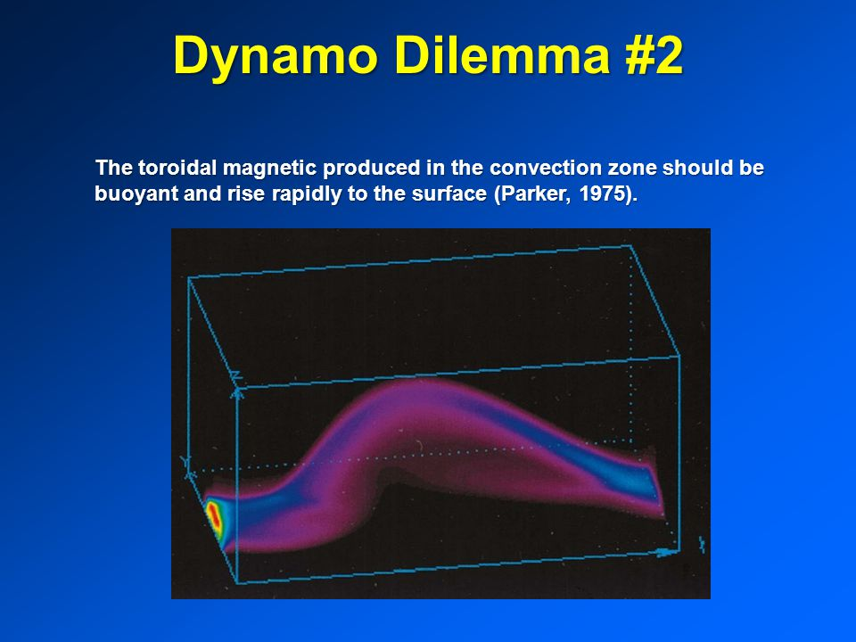 Dynamo Dilemma #2 The toroidal magnetic produced in the convection zone should be buoyant and rise rapidly to the surface (Parker, 1975).