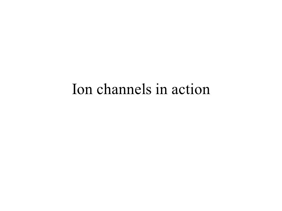 Ion channels in action