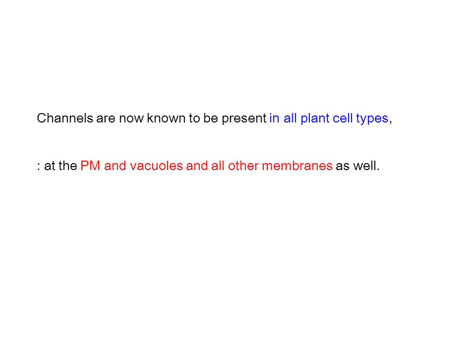 Channels are now known to be present in all plant cell types,