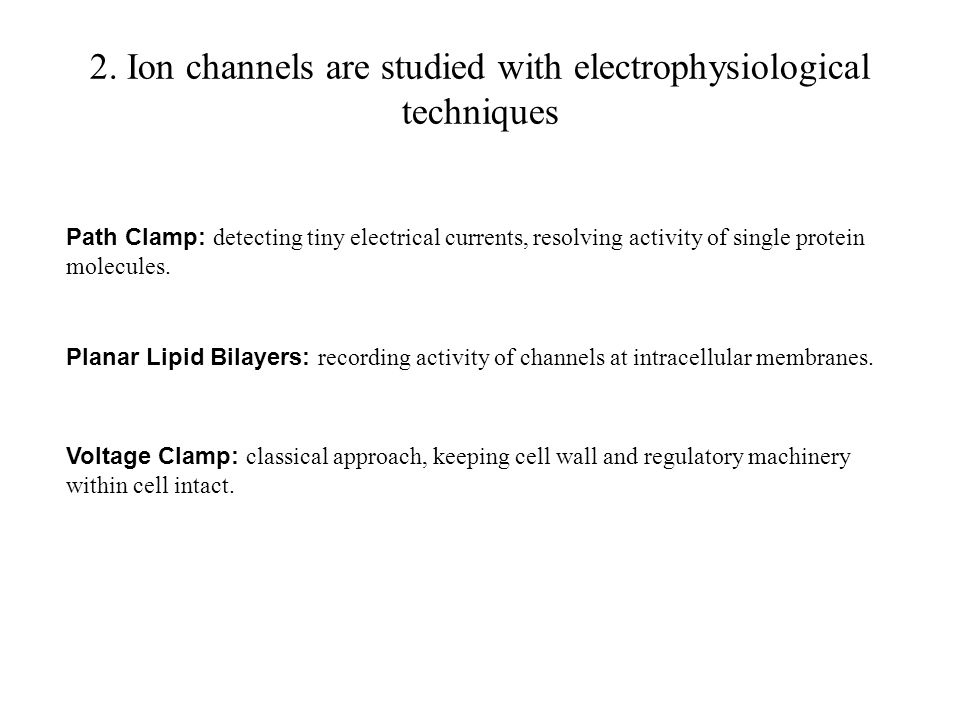 2. Ion channels are studied with electrophysiological techniques