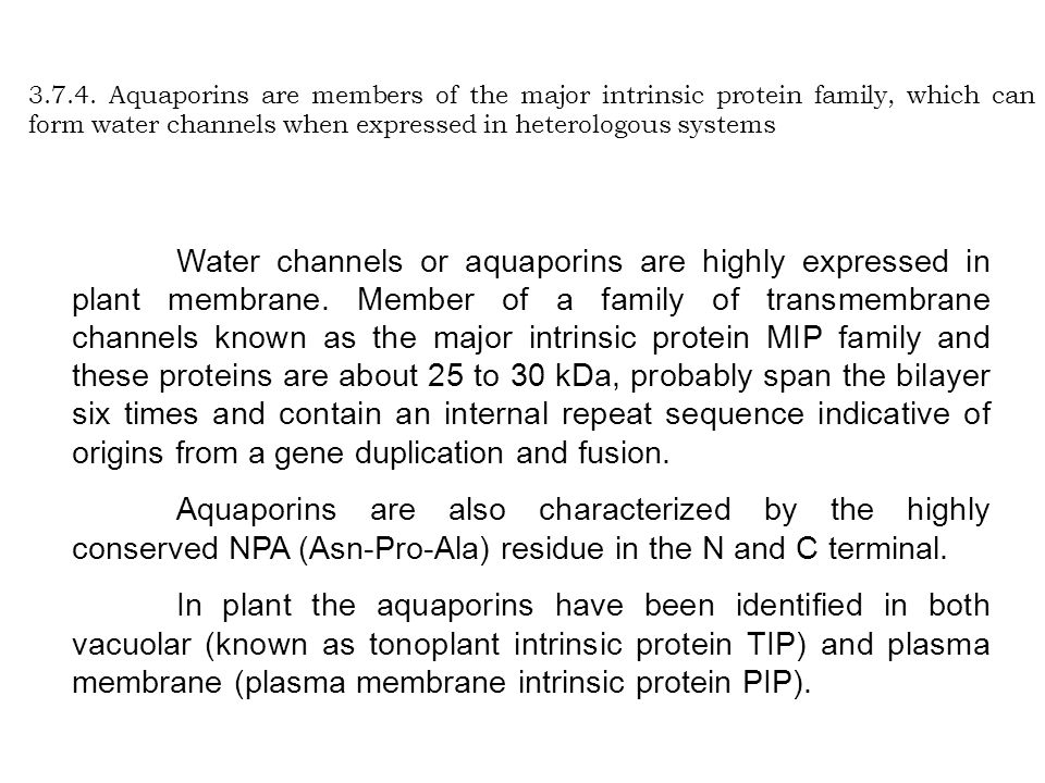 3.7.4. Aquaporins are members of the major intrinsic protein family, which can form water channels when expressed in heterologous systems