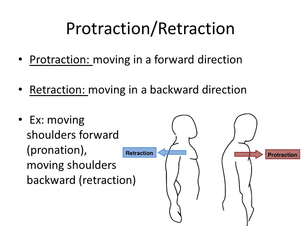 Protraction/Retraction
