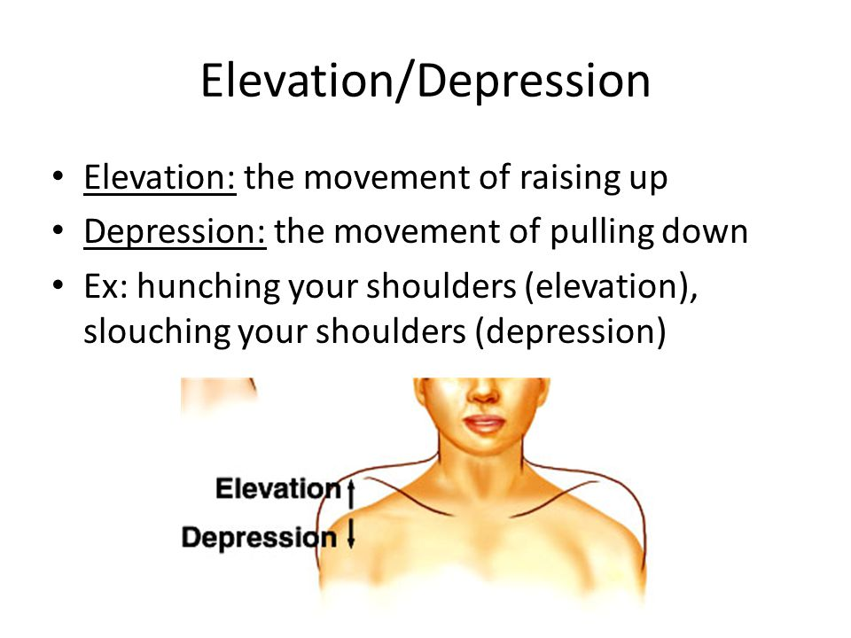 Elevation/Depression