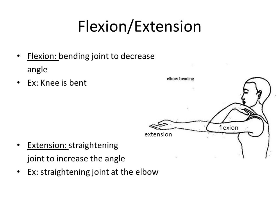 Flexion/Extension Flexion: bending joint to decrease angle