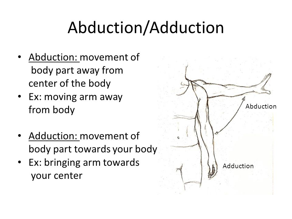 Abduction/Adduction Abduction: movement of body part away from