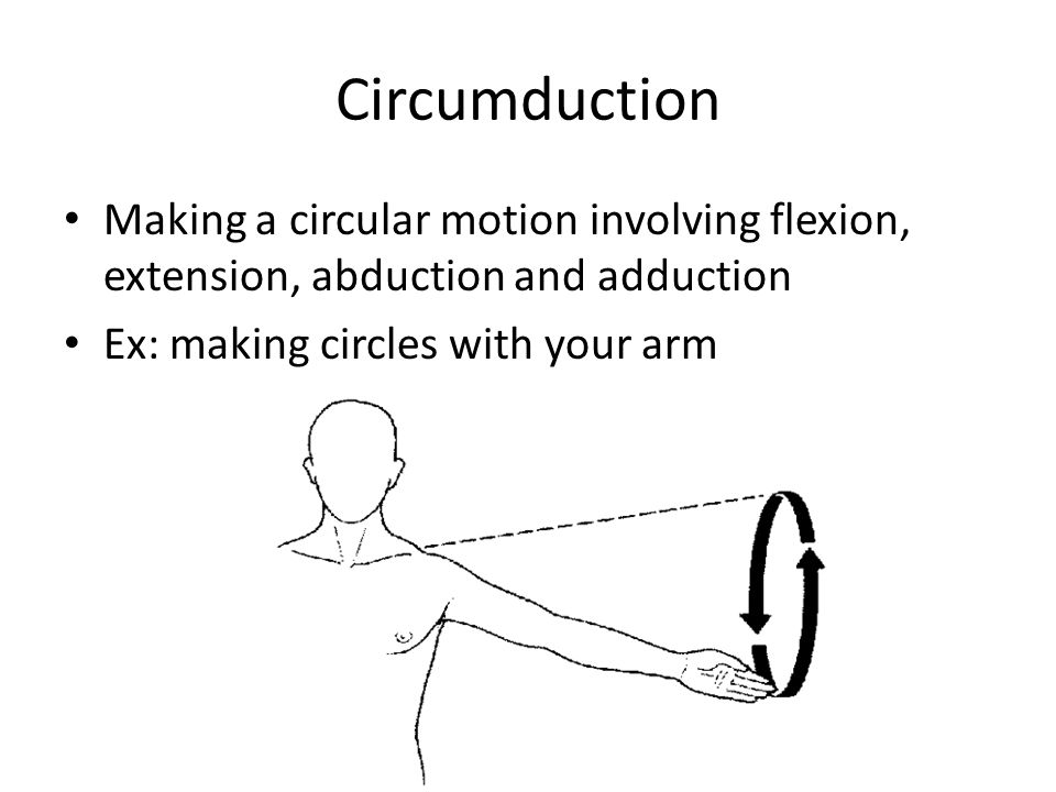 Circumduction Making a circular motion involving flexion, extension, abduction and adduction.