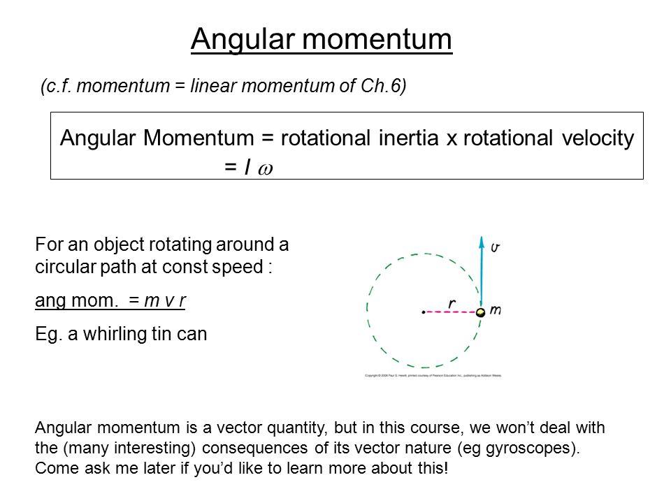 Angular momentum = I w (c.f. momentum = linear momentum of Ch.6)