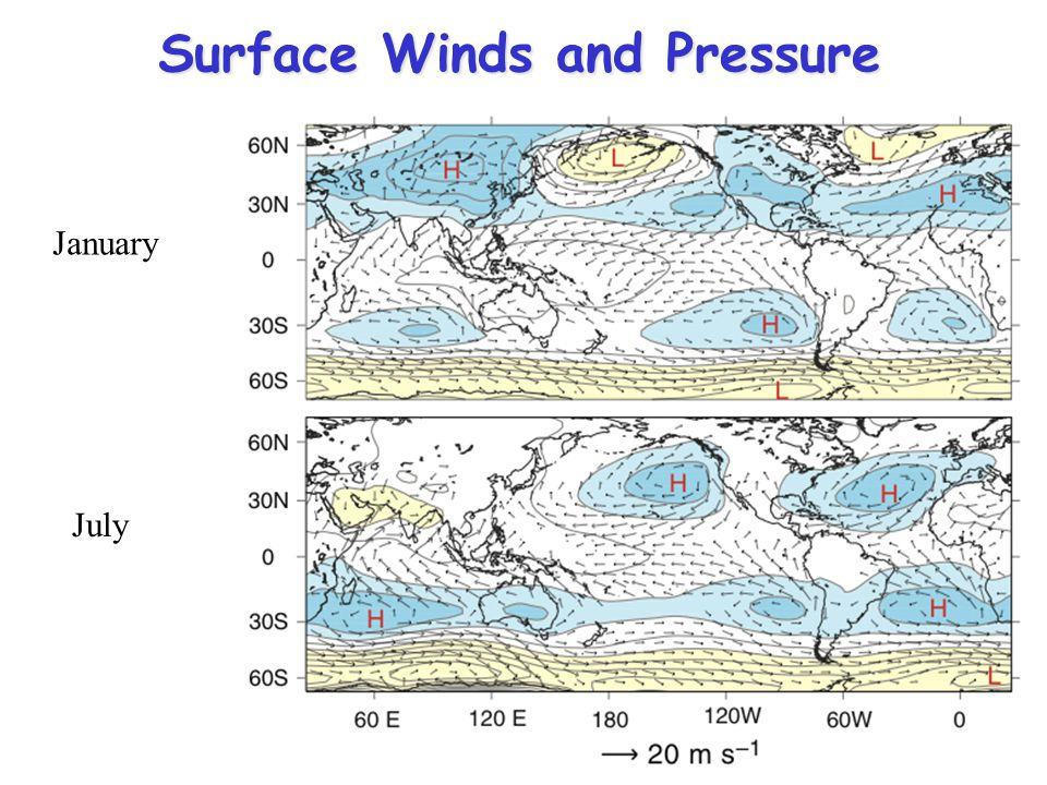Surface Winds and Pressure