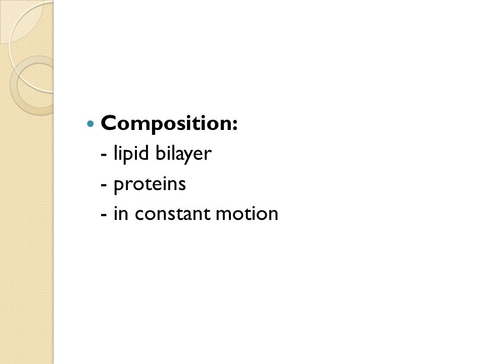 Composition: - lipid bilayer - proteins - in constant motion