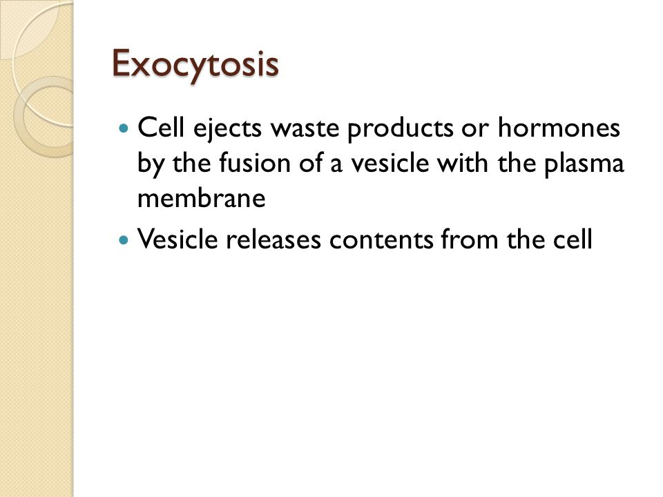 Exocytosis Cell ejects waste products or hormones by the fusion of a vesicle with the plasma membrane.