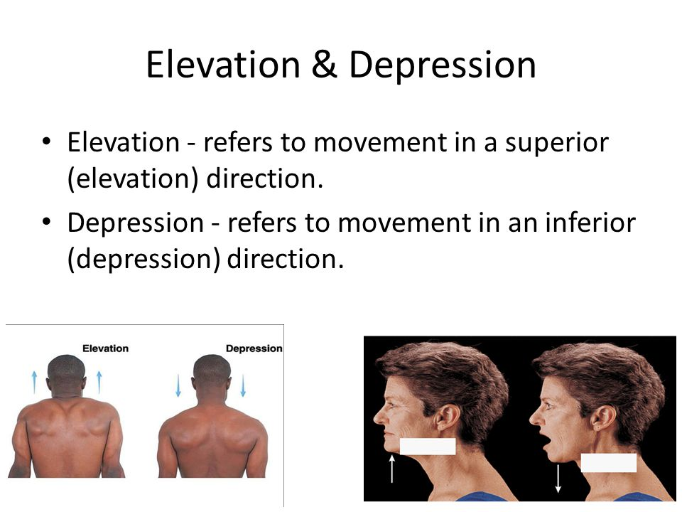 Elevation & Depression