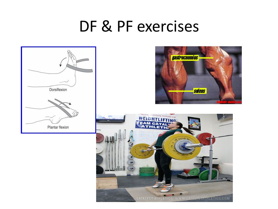 DF & PF exercises
