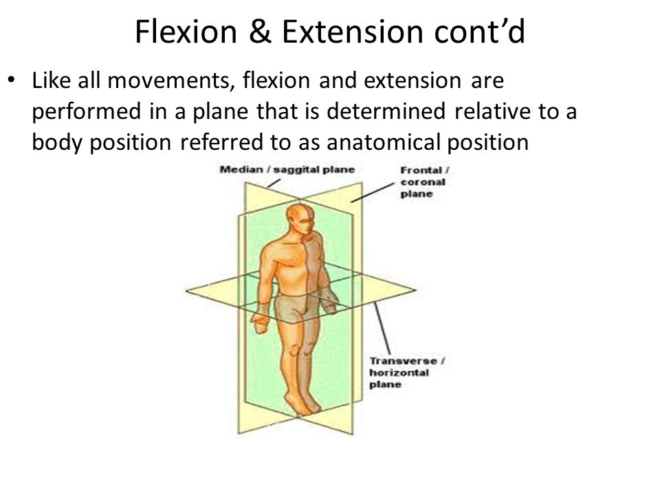 Flexion & Extension cont'd