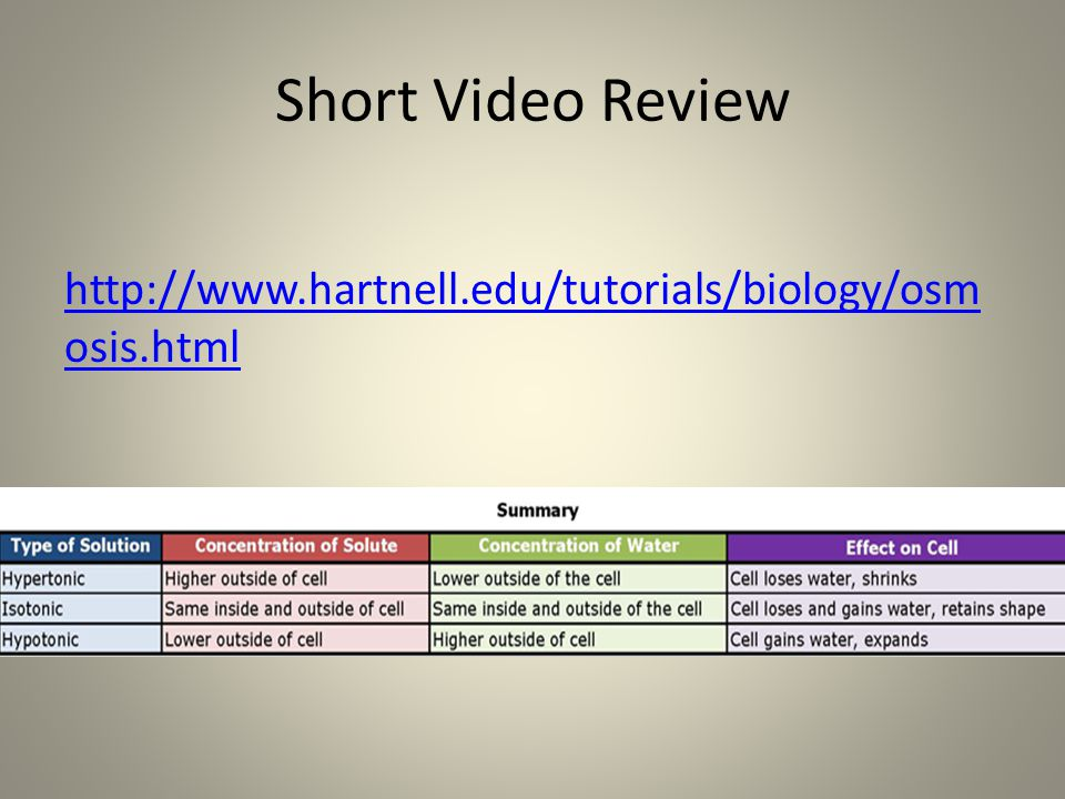 Short Video Review http://www.hartnell.edu/tutorials/biology/osmosis.html