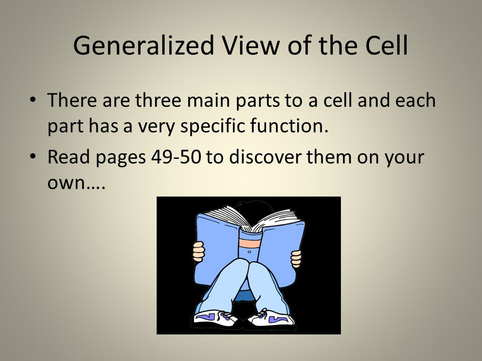 Generalized View of the Cell