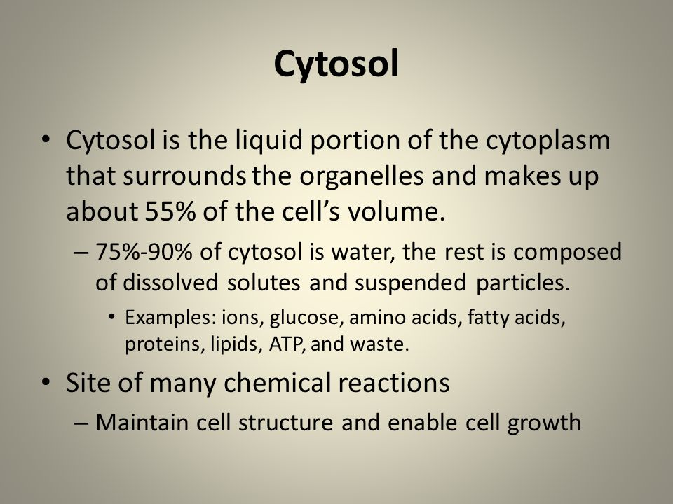 Cytosol Cytosol is the liquid portion of the cytoplasm that surrounds the organelles and makes up about 55% of the cell's volume.