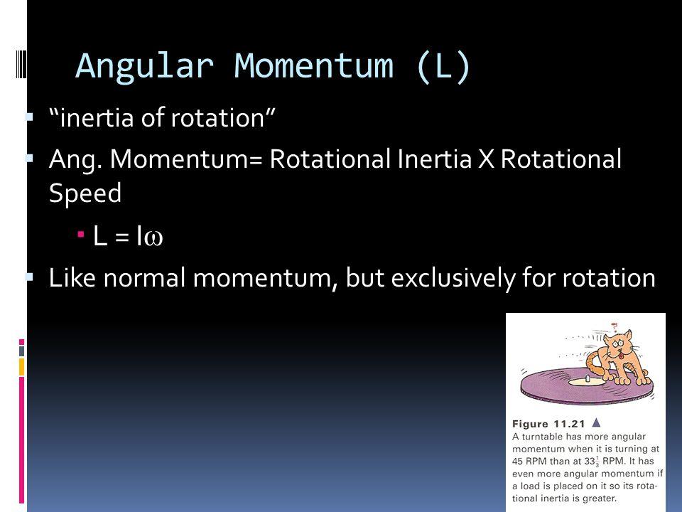 Angular Momentum (L) L = Iω inertia of rotation