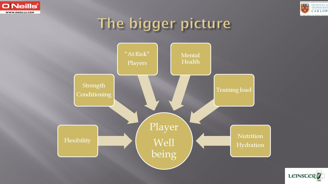 The bigger picture Well being Player Flexibility Conditioning Strength