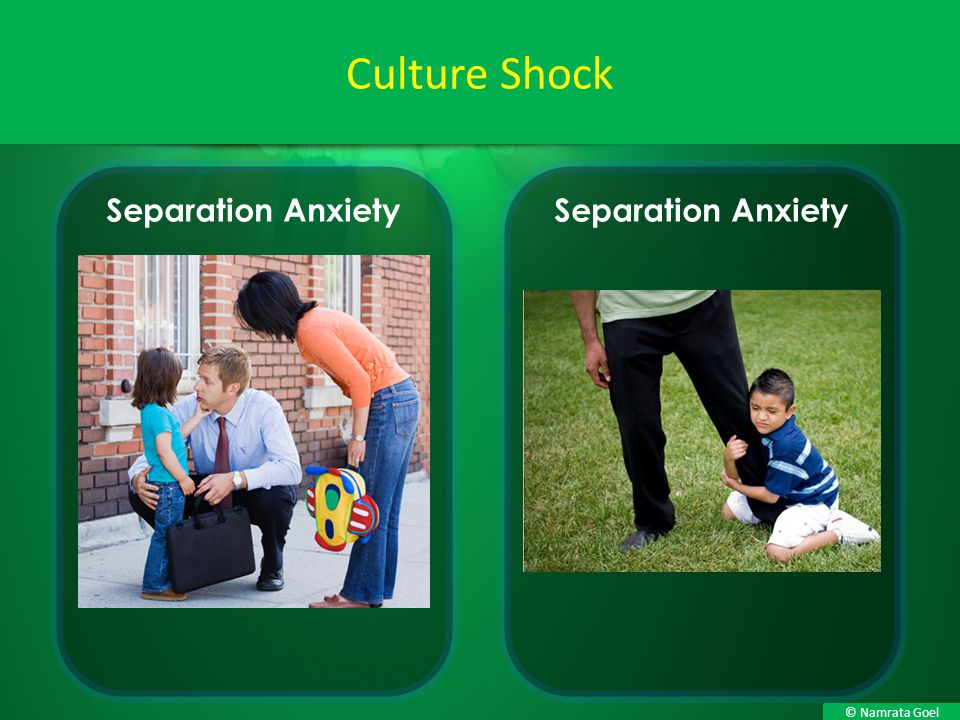 Culture Shock Separation Anxiety Separation Anxiety