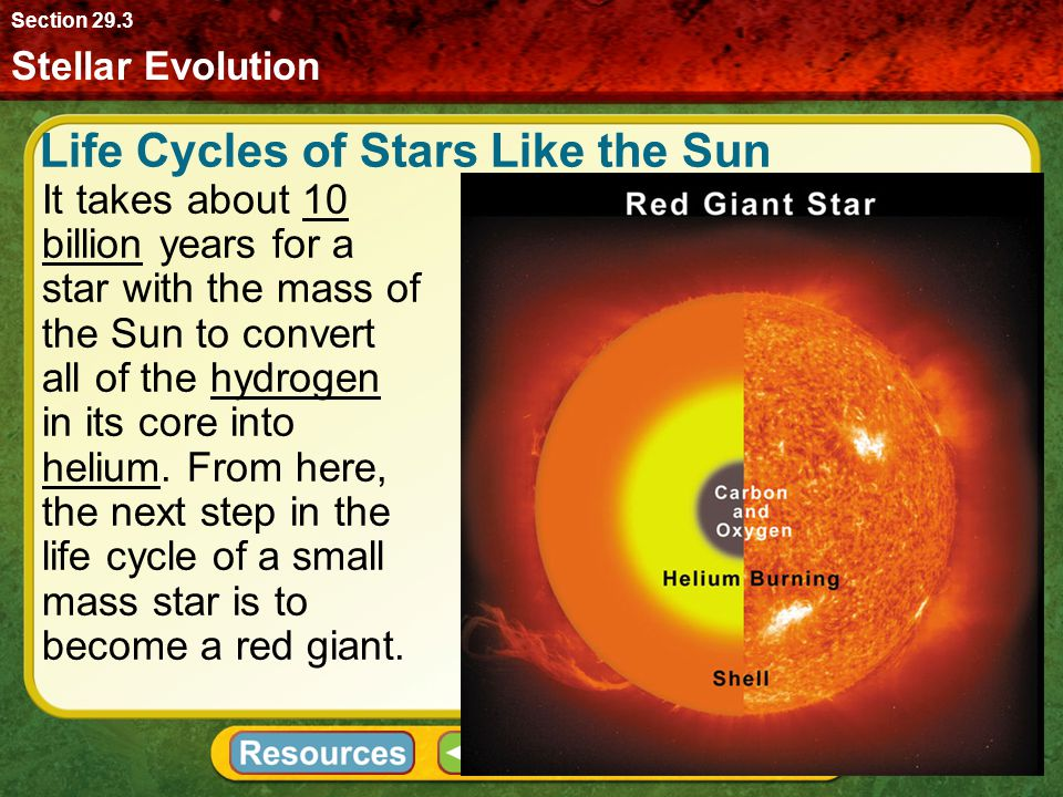 Life Cycles of Stars Like the Sun
