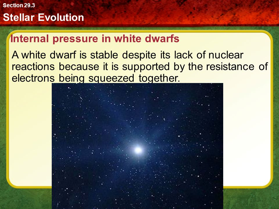 Internal pressure in white dwarfs