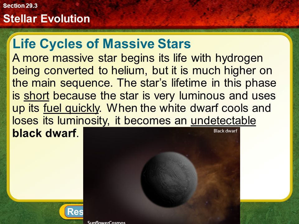 Life Cycles of Massive Stars