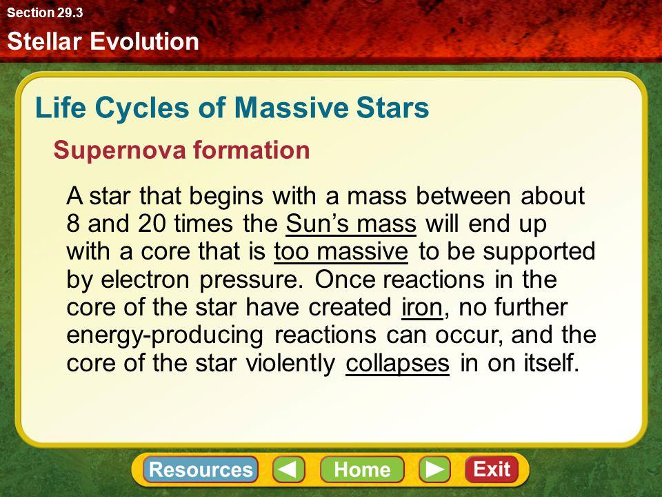 Life Cycles of Massive Stars