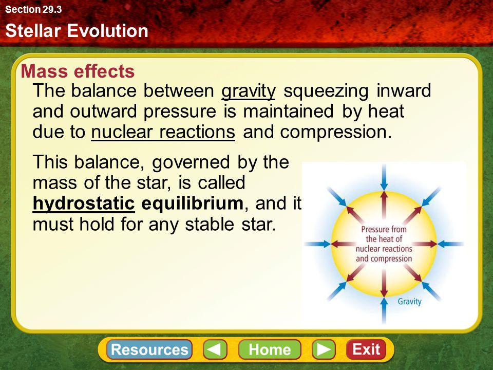 Section 29.3 Stellar Evolution. Mass effects.
