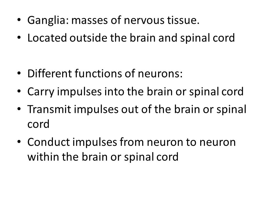 Ganglia: masses of nervous tissue.