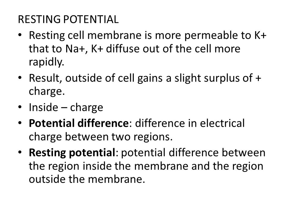 RESTING POTENTIAL Resting cell membrane is more permeable to K+ that to Na+, K+ diffuse out of the cell more rapidly.