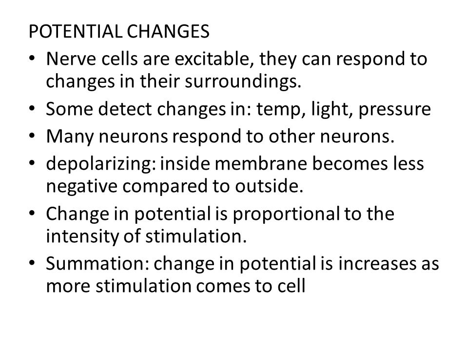POTENTIAL CHANGES Nerve cells are excitable, they can respond to changes in their surroundings. Some detect changes in: temp, light, pressure.
