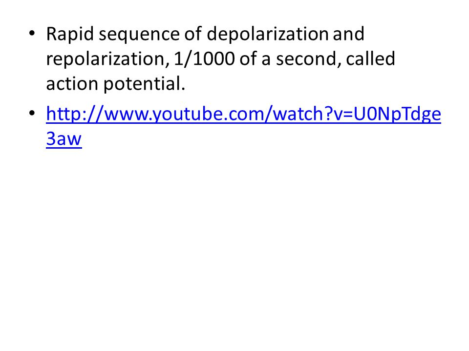 Rapid sequence of depolarization and repolarization, 1/1000 of a second, called action potential.