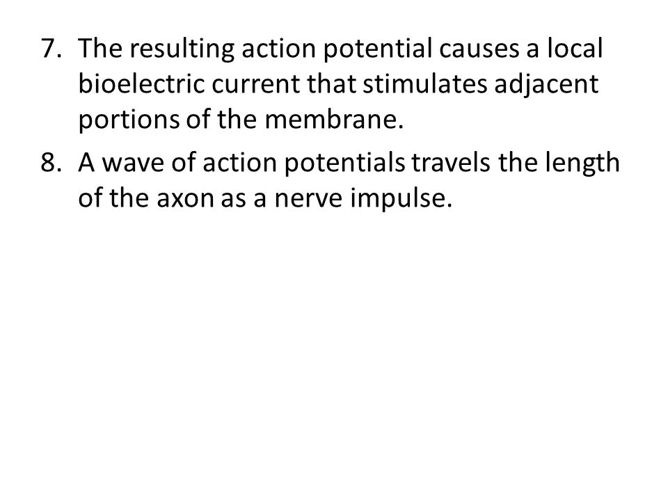The resulting action potential causes a local bioelectric current that stimulates adjacent portions of the membrane.
