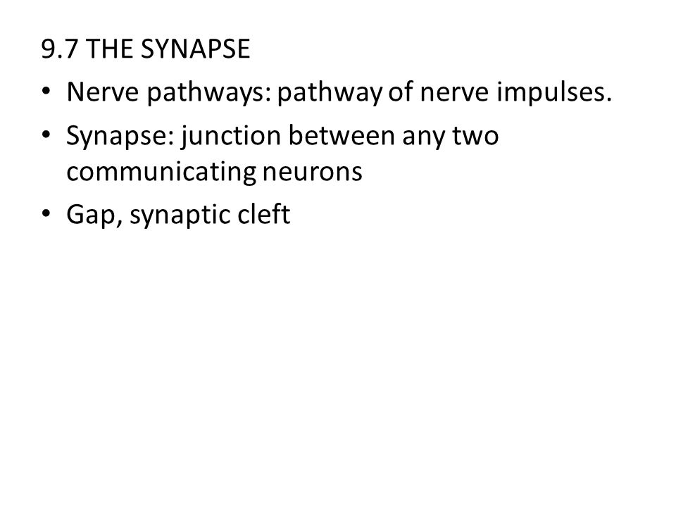 9.7 THE SYNAPSE Nerve pathways: pathway of nerve impulses. Synapse: junction between any two communicating neurons.