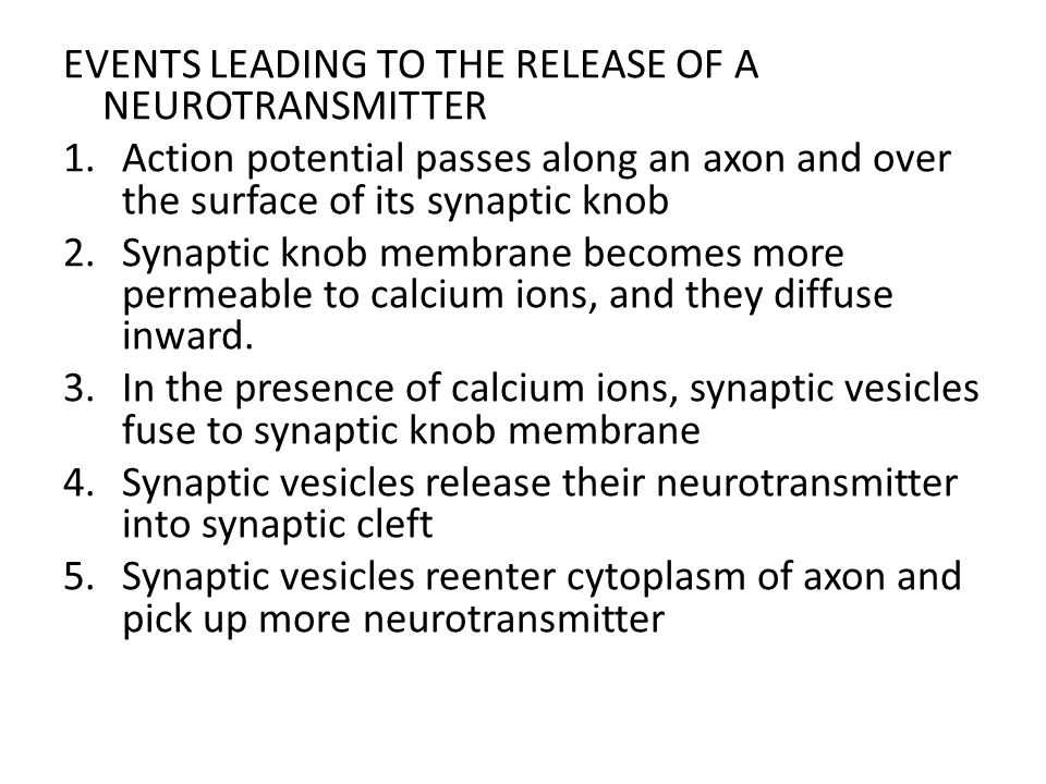EVENTS LEADING TO THE RELEASE OF A NEUROTRANSMITTER