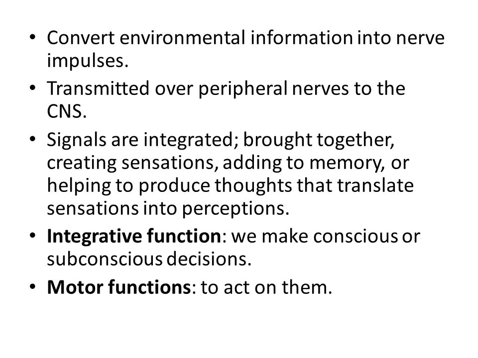 Convert environmental information into nerve impulses.