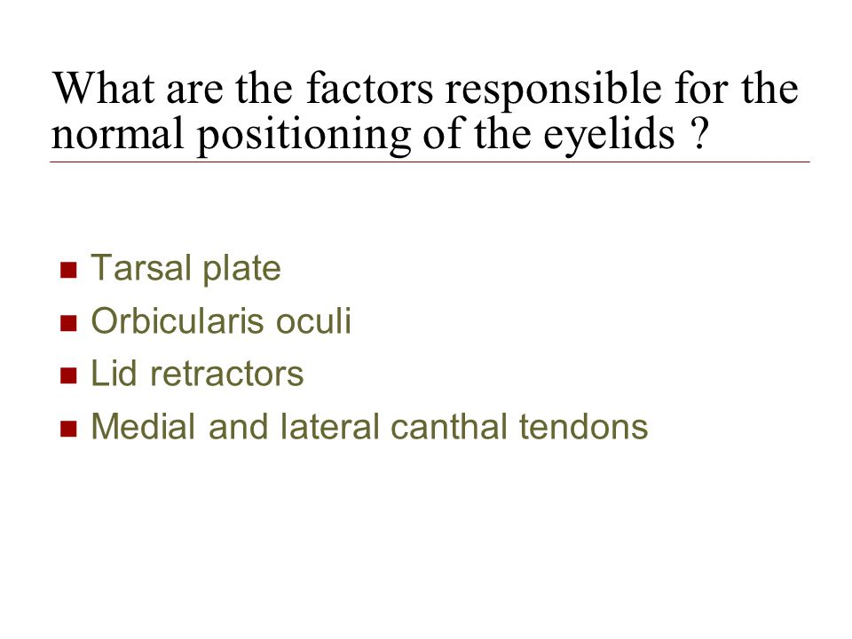 What are the factors responsible for the normal positioning of the eyelids