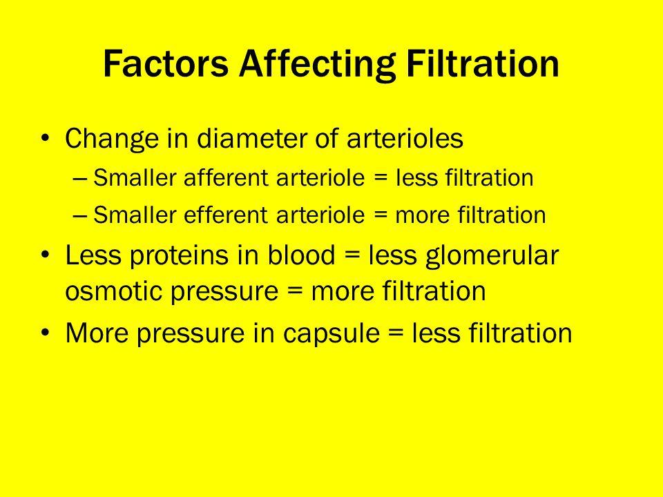 Factors Affecting Filtration