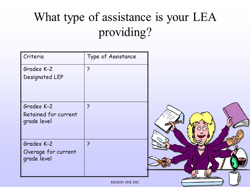 What type of assistance is your LEA providing