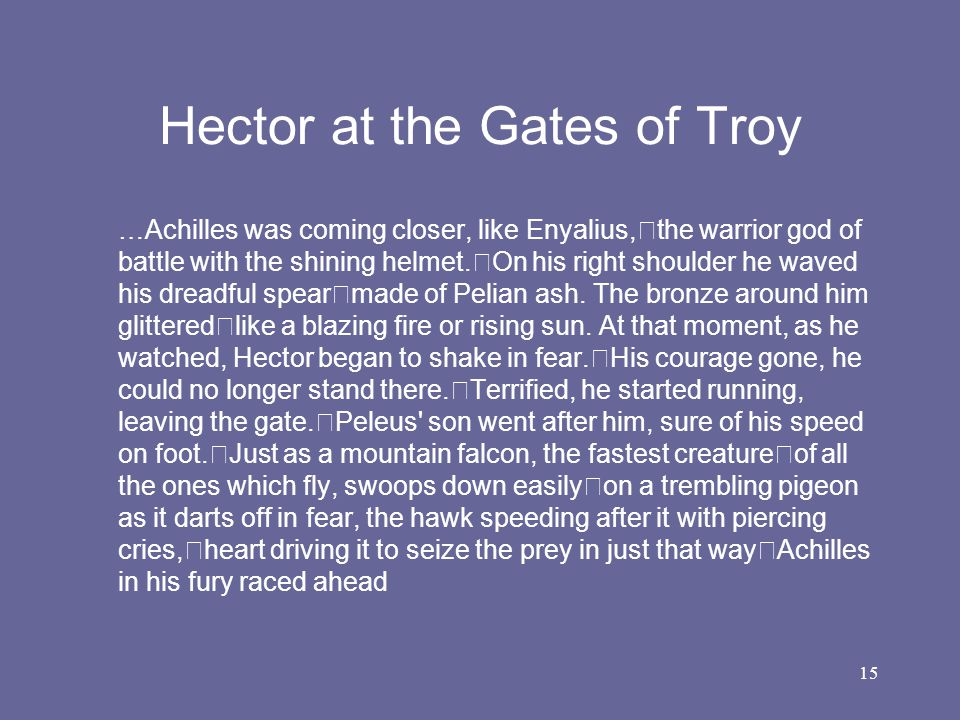 Hector at the Gates of Troy
